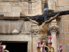 El Santísimo Cristo Crucificado en su paso